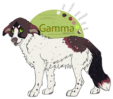 Gamma by Psitt