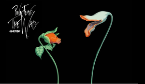 Pink Floyd - The Flowers by elclon