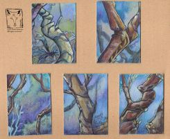 ATC trees by dragonladych