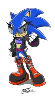 Zee the Hedgehog:. by 5courgesbestbuddy