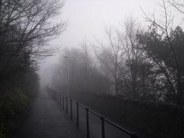 Fog on the Walkway Pt2 by scottcarmichael