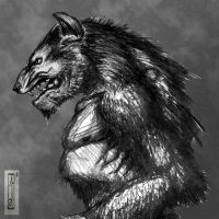 Werewolf sketch by Entenn
