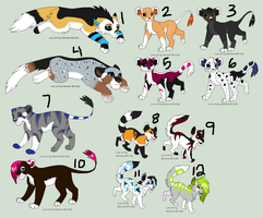 Mixed Point Adopts -CLOSED- by PoodleFradoodle