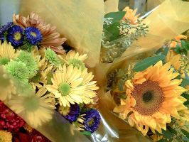 Sunshine and Bouquets by Tuesdaysangel