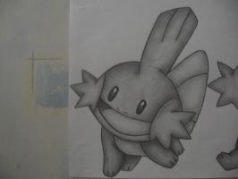 Mudkip Drawing 1 by sazmullium