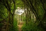 The Greenhouse by attomanen
