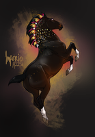 X2256 Imperio by NorthEast-Stables