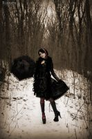 In the Winter by Elisanth