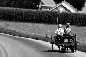 Amish Children by fotograff