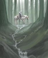 a knight in the forrest by yonaz