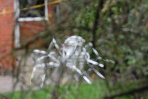 Untitled. The Chair spider by lifeforceinsoul