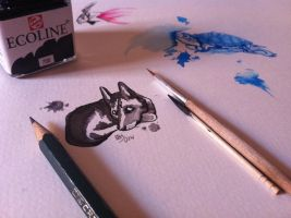 Working with Chinese INK by Khryphos