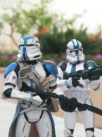 501 st Clone Troopers by TheJediClone