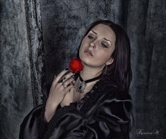THE MIDNIGHT ROSE by KerensaW