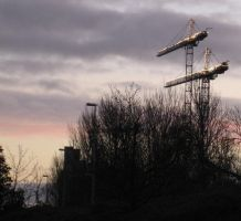 Christmas Cranes by Neale