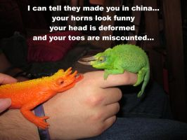 the thoughts of a chameleon by skater4life509