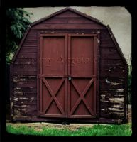The Shed by tammy-angela