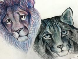 lion and bobcat by roadstef