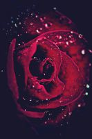Love is only... by Eternal-Polaroid