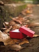 Little Red Box by Wretched-Existence
