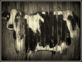 MooCow by hoaxeye