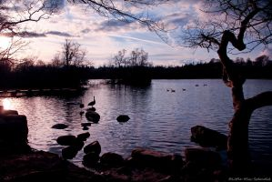 Bolam Lake by Little-Miss-Splendid