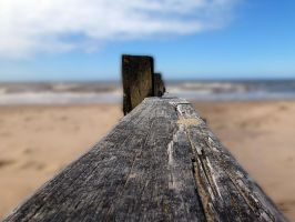 Sand on Wood by friartuck40