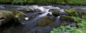 The flow by forgottenson1