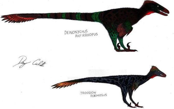 Deinonychus and Troodon by Dennonyx