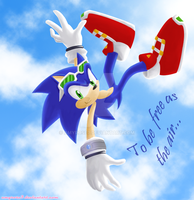 Sonic T.H. Riders Zero Gravity by amyrose7