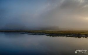 Pelham Bay Marshes 2 by ForsakenOutlaw
