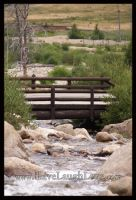 Bridge over Alluvial Fan by iLiveLaughLove