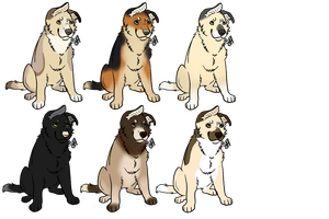 Dog Puppies for Adoption - Open by Akeera-Wolf