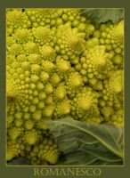 Romanesco by Tricia-Danby