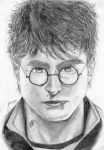 Harry Potter. by Twin2-1997