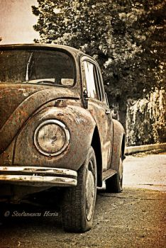 Rust and Dust by fumuldetigara