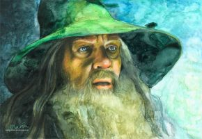 Gandalf by MariaBruggeman