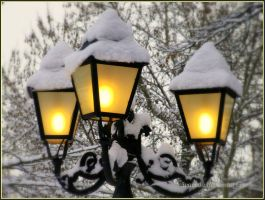 Snowy Lights  BW by Aivaseda