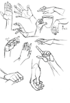 Hand Studies 3 by Cutiekitty01