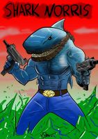Shark Norris by N-Dee