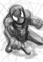 Spidey Speed Drawing by iEvEtS