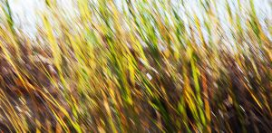 moving grass by right-angle