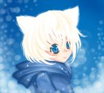 A very cold day: nyao by yumiko33