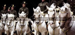 Spanish Riding School 36 by JullelinPhotography