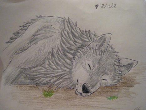Sleeping Silver by coffeelover1411