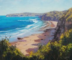 Norah Head , NSW by artsaus