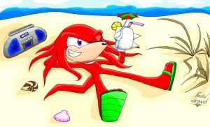 Knuckles in the summer heat by naysu