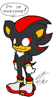 Shadow is Awesome by NeroStreet