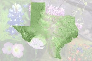 Texas by mamaslyth