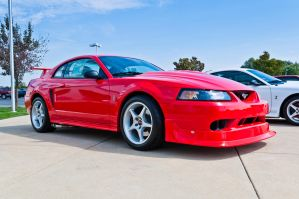 2014 Mustang Round Up 001 by Stig2112